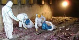 Corso Analisi di Rischio per la bonifica dei siti contaminati